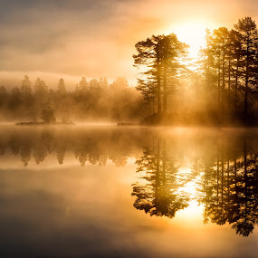 Golden hour by Walter Urnes - Landscapes Sunsets & Sunrises ( autumn, fog, lake, sunrise, golden hour )