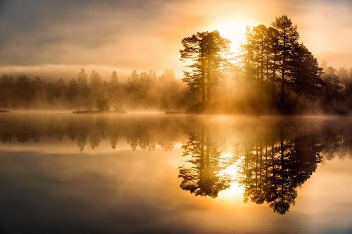 Golden hour by Walter Urnes - Landscapes Sunsets & Sunrises ( autumn, fog, lake, sunrise, golden hour )