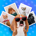 Pets photo editor icon