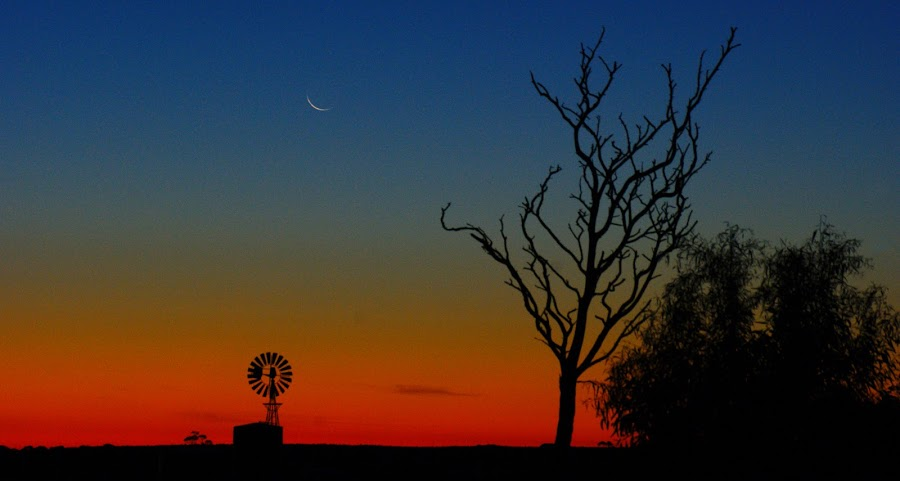 Waiting for Dark by Tony Esh - Novices Only Landscapes ( orange, moon, sunset, dead tree, windmill )