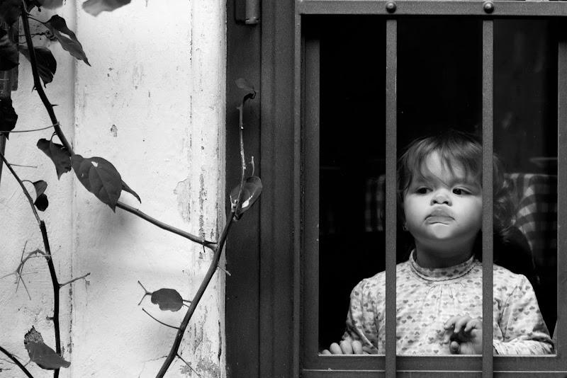 Osservare senza condizionamenti. di Domenico Cippitelli