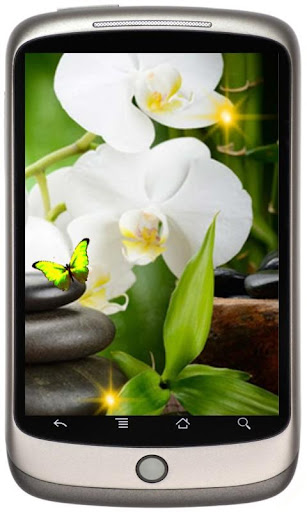 Orchids Best Live Wallpaper