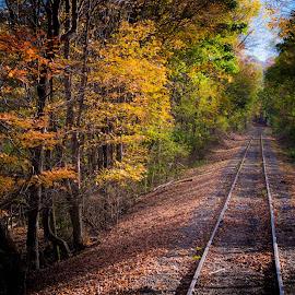 Autumn Along the Rails by Gary Hanson - Transportation Railway Tracks ( cumberland, railroad tracks, rails, autumn, colors, railroad, maryland, tracks,  )