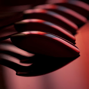 Spoons by Elvis Pažin - Artistic Objects Other Objects ( macro, red, pattern, spoon, black )