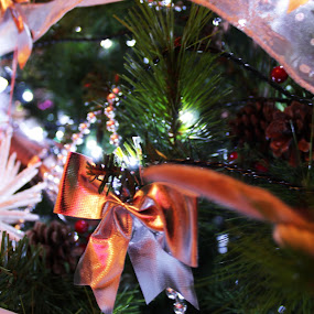 by Bradley Foot - Public Holidays Christmas ( tree, ribbon, decorations, christmas, xmas )