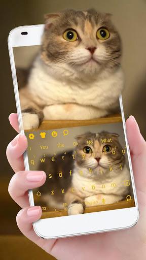 3D Live chubby Cute Kitty Keyboard 10001 screenshots 2