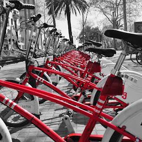 barcelona bicing by Tyler Sleap - Transportation Bicycles ( palm, bicycles, red, tree, transport, perspective, public, barcelona, spain )