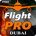 Pro Flight Simulator Dubai icon