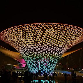 Illuminated pavillon by Svetlana Saenkova - Buildings & Architecture Other Exteriors ( expo 2010, nighttime, illuminated,  )