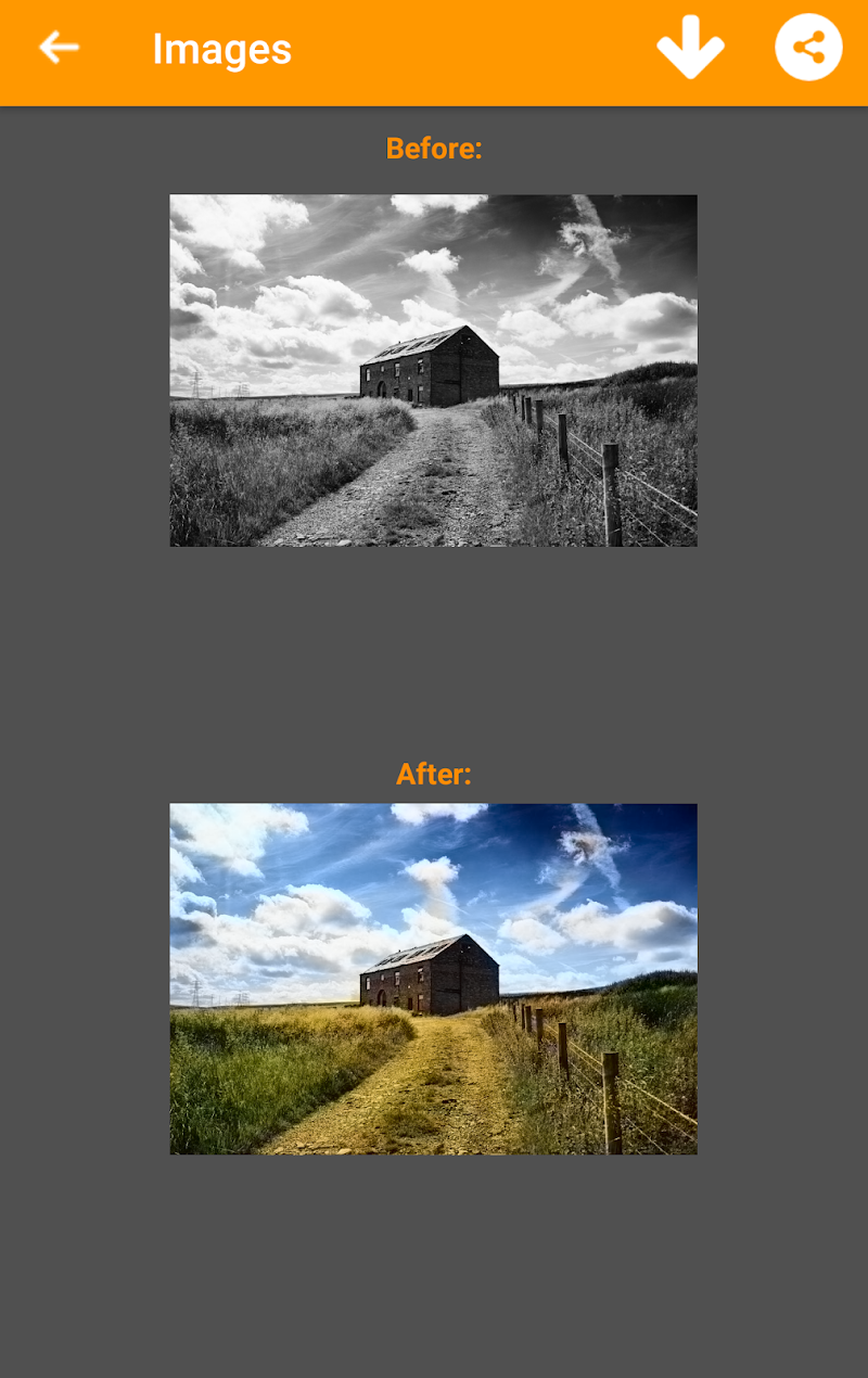 Black and White Photo Colorizer - Chromatix Screenshot 0