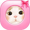 Cute cat theme icon