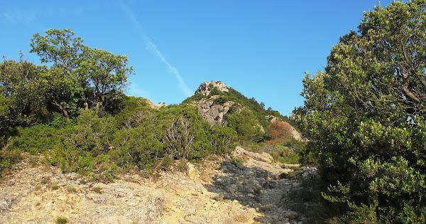 Punta de Barrina