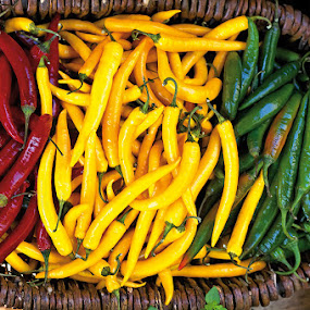 Chilli hues by Rob Rickman - Food & Drink Ingredients ( market, color, basket, hot, chilli )