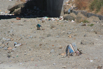 Photo: This man was digging in the riverbed.  I don't know why.