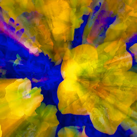 by Jim Jones - Abstract Patterns ( art, flowers, color, patterns, abstract )