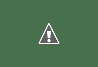 Photo: Dawn Dream