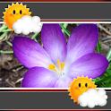 Crocus Weather-Clock Widget icon