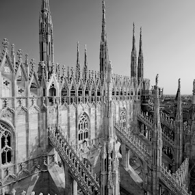 duomo by Marco Virgone - Buildings & Architecture Statues & Monuments ( duomo, gotic )