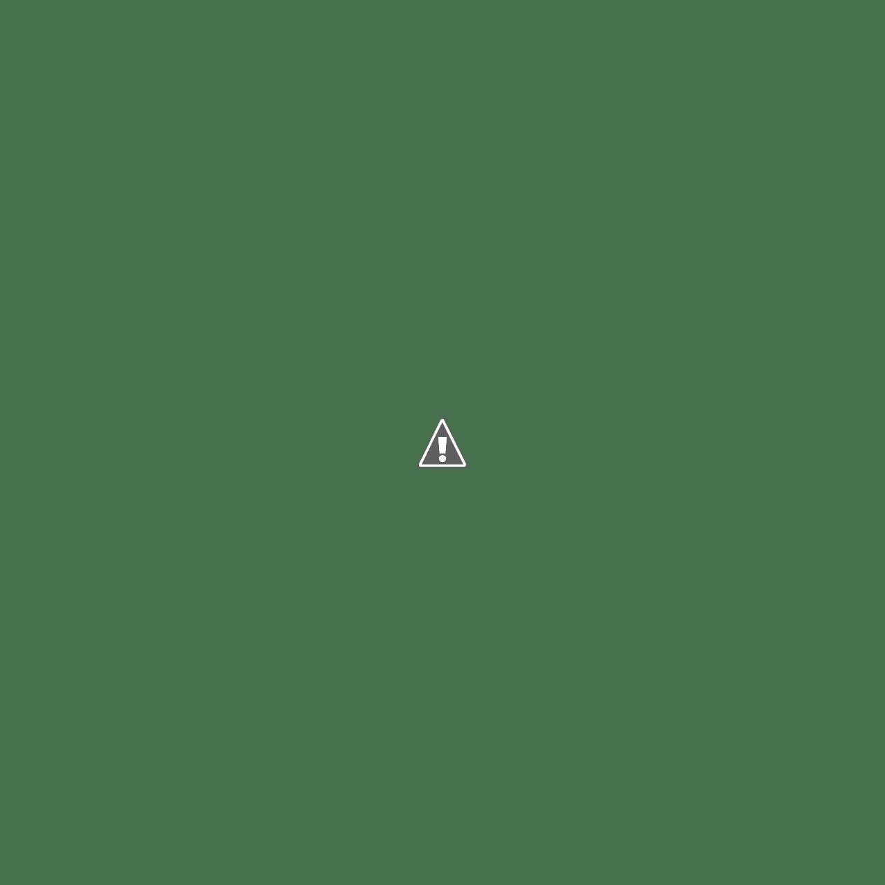 Fish Streat Restoran Seafood