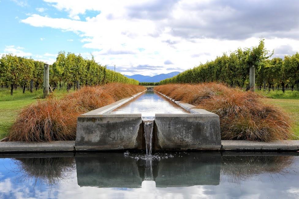 Winnice - Nowa Zelandia