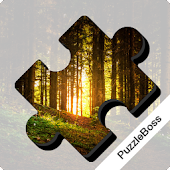 Jigsaw Puzzles: Forests