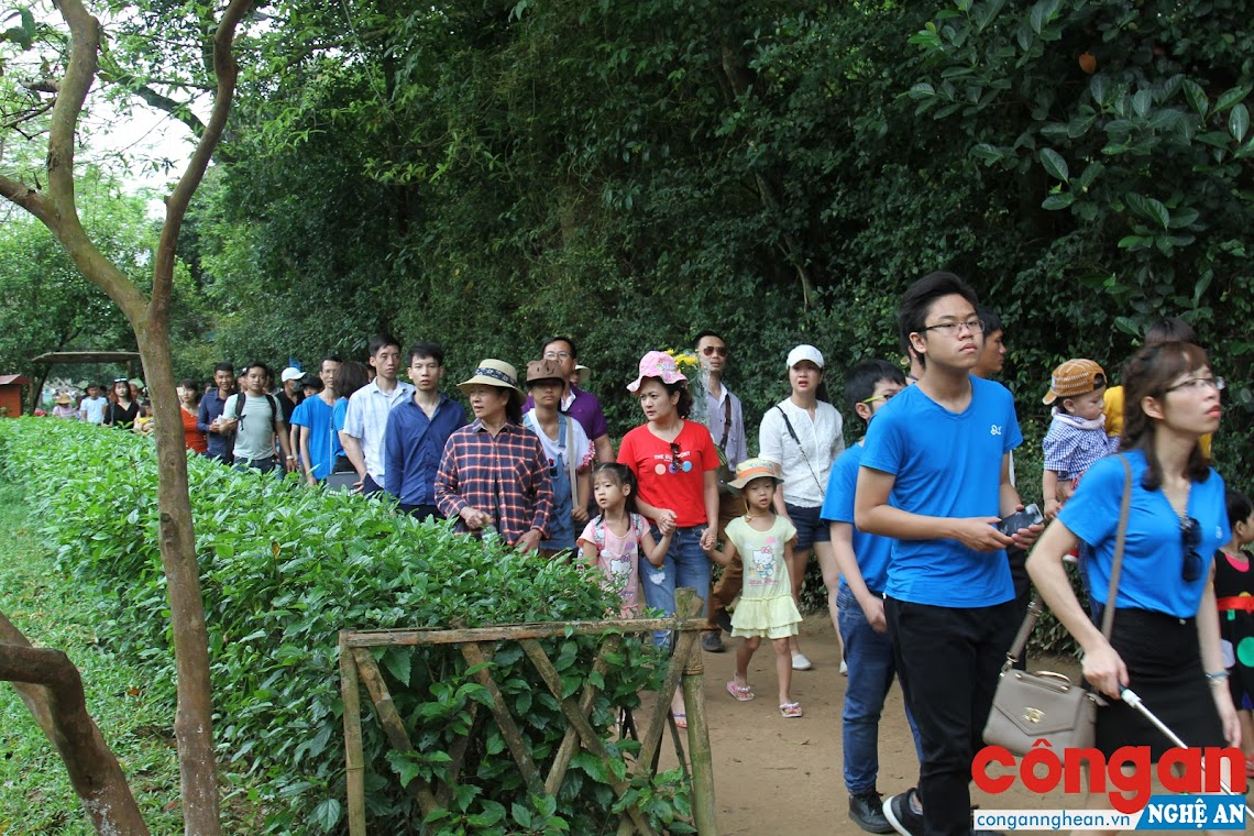 Những ngày tháng 5 này, rất nhiều đoàn du khách  đến tham quan Khu di tích Kim Liên
