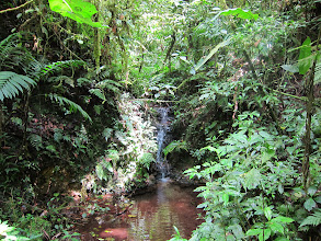 Photo: Waterfall in Santa Elena reserve