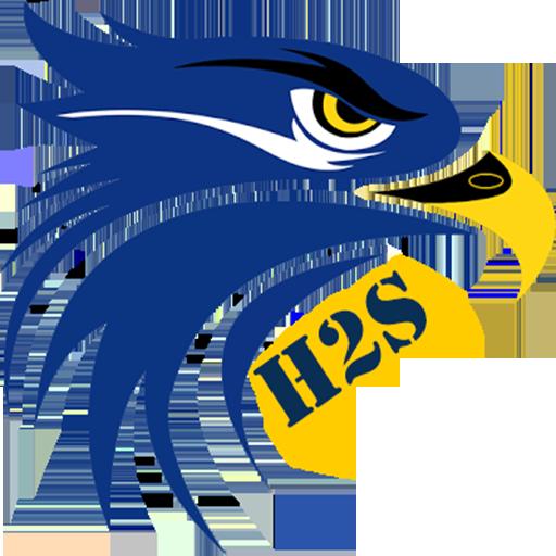 Hawks Heaven Game Studio (H2S) avatar image