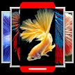 HD Betta Fish Wallpapers 4K APK
