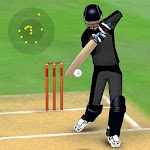 Smashing Cricket - a cricket game like none other 2.9.1