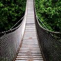 bridges wallpaper icon