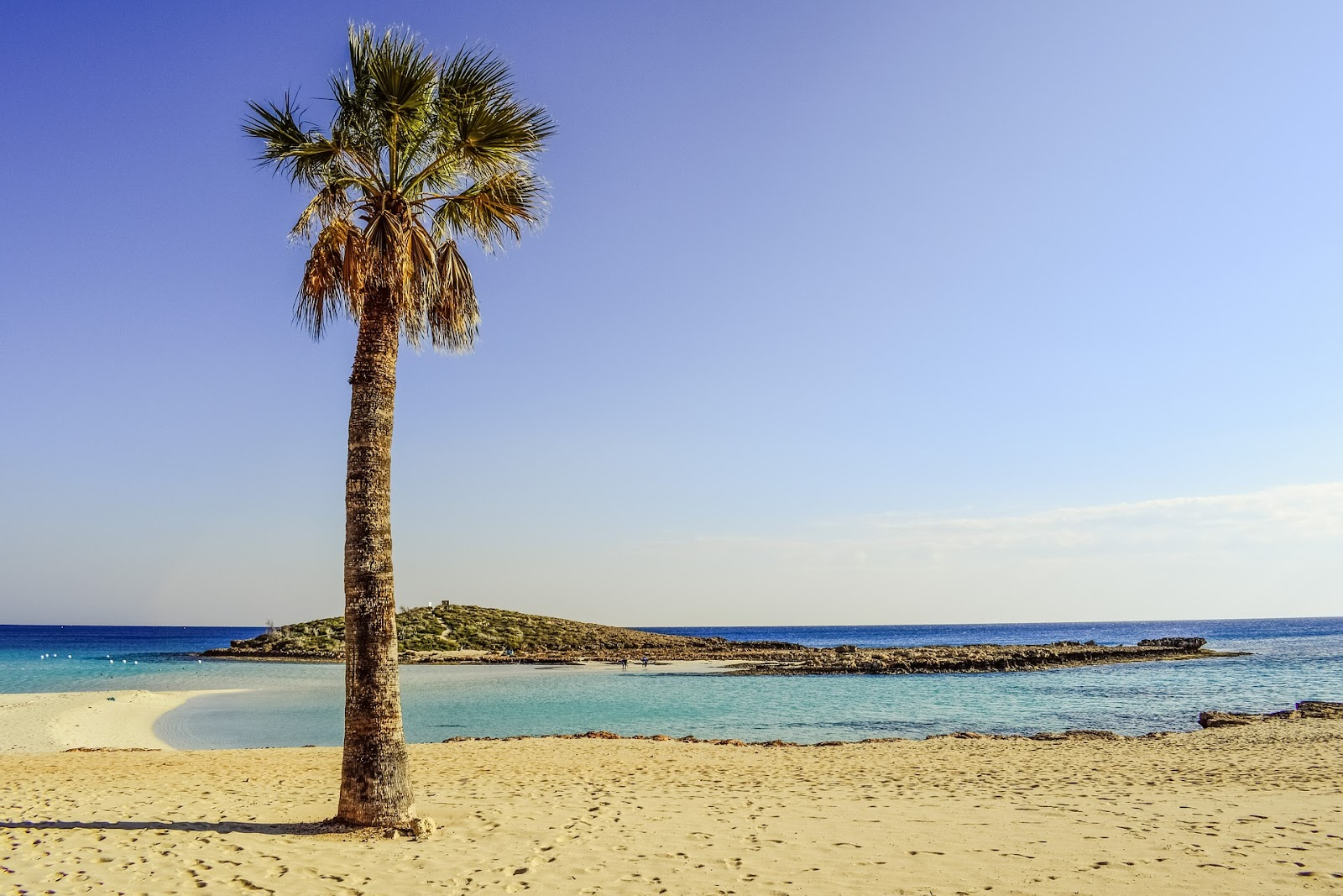 nissi beach cyprus, crystal-clear water on an empty day. small island connected with sandy path. one palm tree on sand, no tourists. sunrise in cyprus