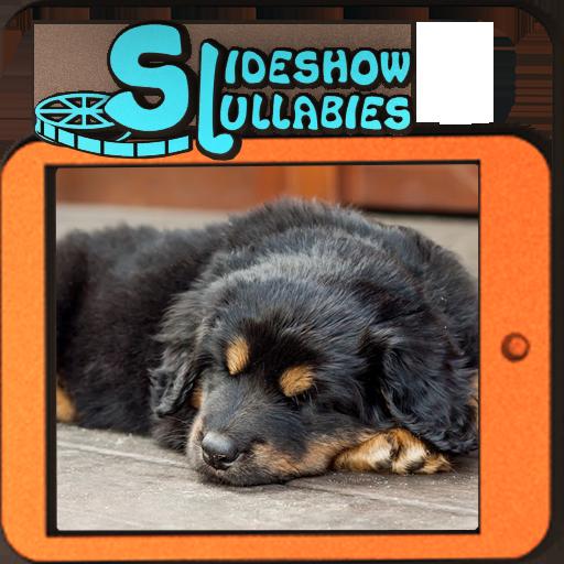 Slideshow Lullabies: Animals 遊戲 App LOGO-硬是要APP