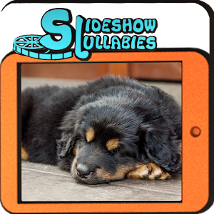 Slideshow Lullabies: Animals