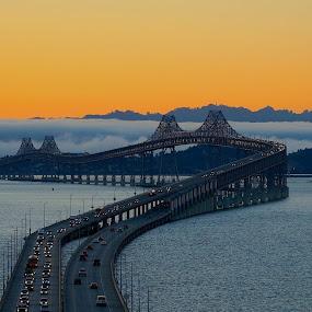 A foggy sunrise, San Rafael Bridge, CA by Robin Rawlings Wechsler - Buildings & Architecture Bridges & Suspended Structures ( water, nature, fog, san francisco bay, seascape, bridge, sunrise, landscape )