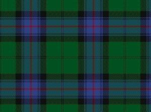 This is my husband's Armstrong clan tartan.  His mother had a necktie made...