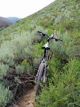 Photo: I turned around here after growing weary of the rocks and thick sagebrush on the trail