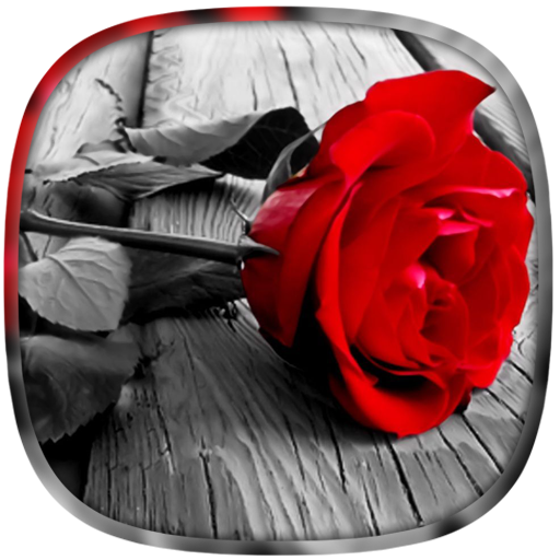 Color Splash Photo 遊戲 App LOGO-硬是要APP