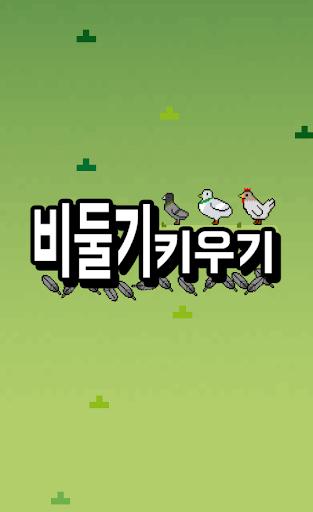 비둘기키우기