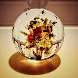 Paperweight  by Nelida Dot - Artistic Objects Glass ( artistic objects, shadow, reflection, glass art, colors, flower,  )