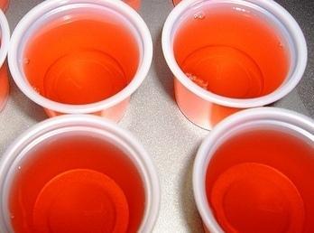 Fuzzy Navel Jello Shots Recipe