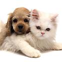 Cute Animals Live Wallpaper icon