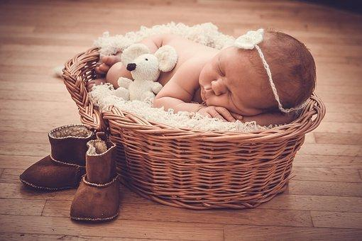 Basket, Gift, Baby, Newburn, Mouse, Toy