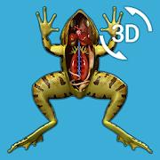 Visual Anatomy 3D - Frog