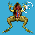 Visual Anatomy 3D - Frog