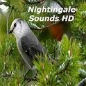 Nightingale Bird Sounds HD icon