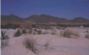 Photo: Playa de los Genoveses. Cabo de Gata (Almería)