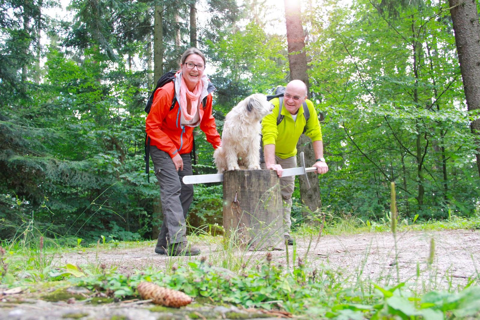 Theme trails im Schwarzwald