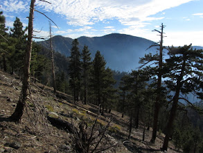 Photo: View east from Copter Ridge toward Mt. Baden-Powell