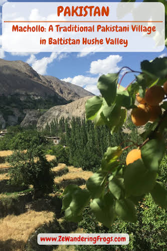 Pakistan Machollo Traditional Village Baltistan Hushe Valley // Apricots and Wheat Fields Pinterest